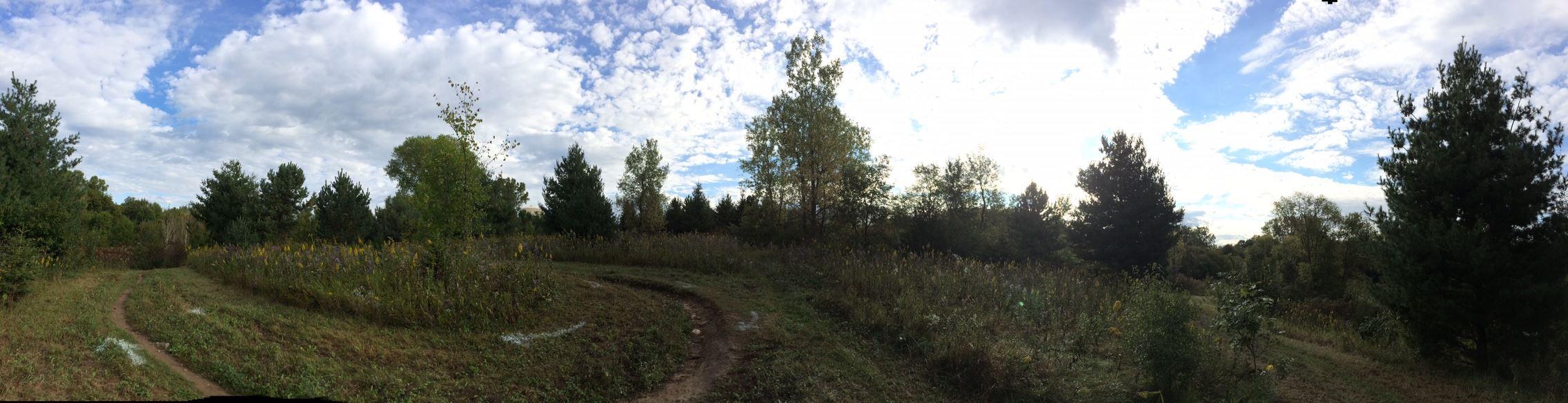 Harmon Park Reserve