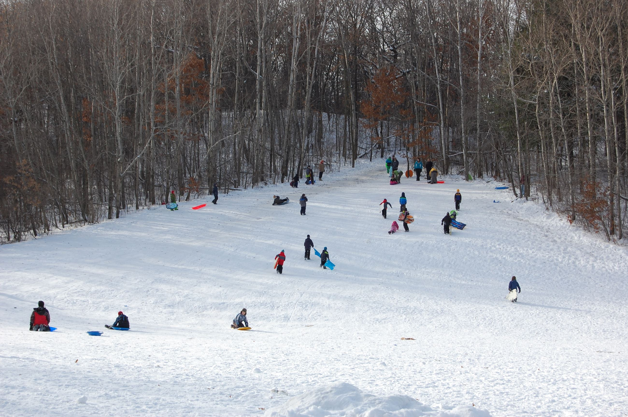 South Valley Park Sledding Hill