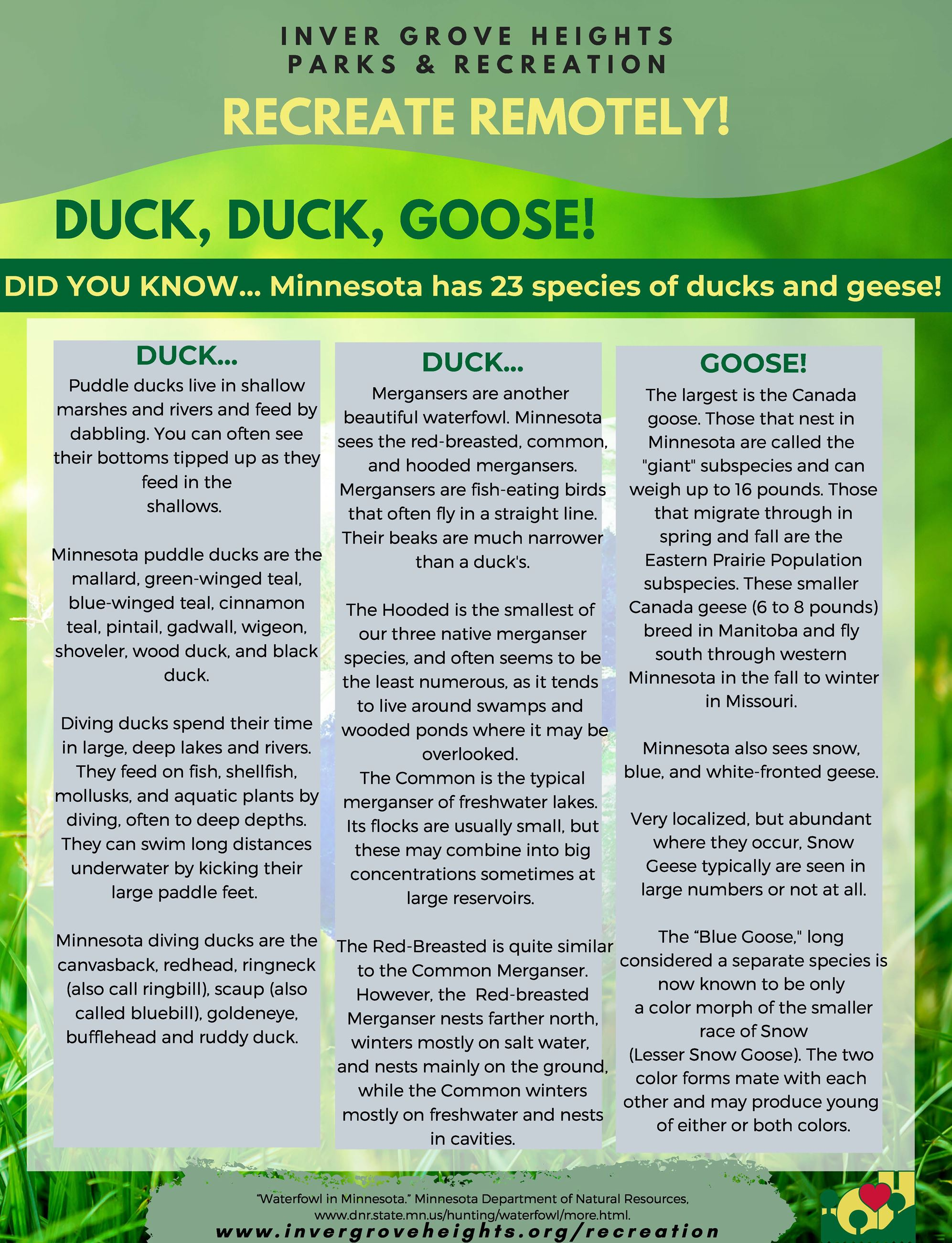Recreate Remotely 2020 Template - 8.5x11 - EarthDay activities - Duck Duck Goose