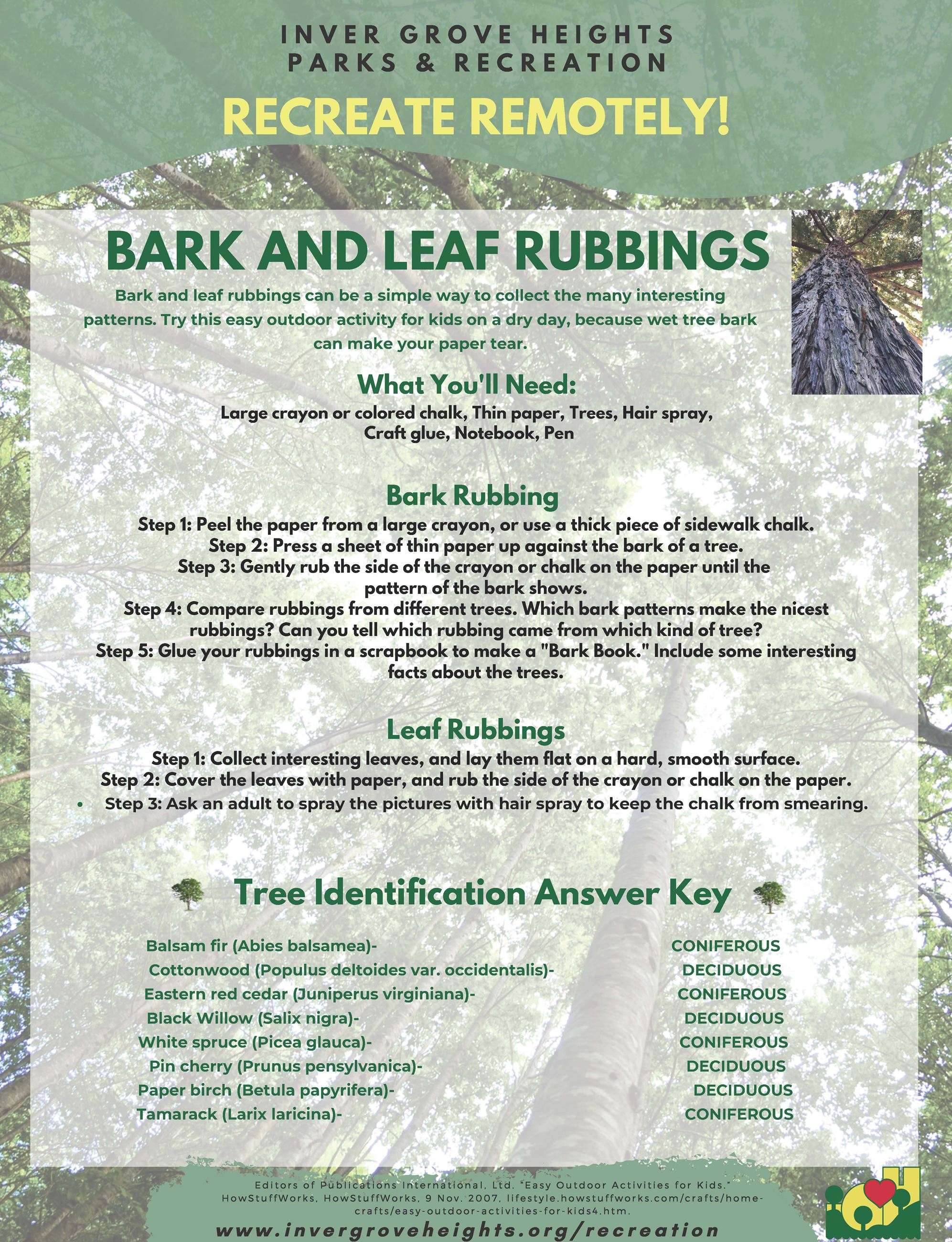 ArborDay Bark and Leaf Rubbings