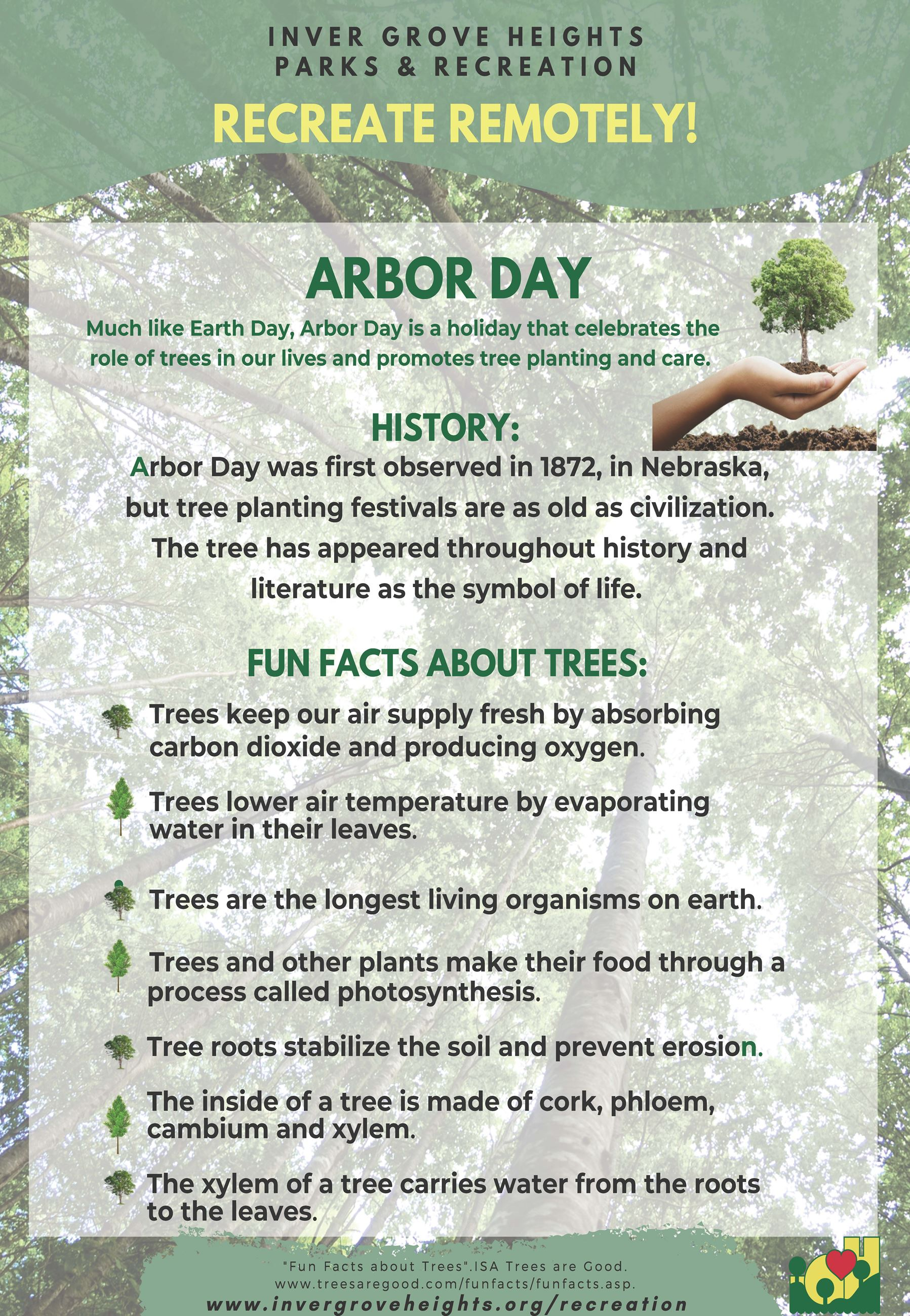 Arbor Day Fun Facts