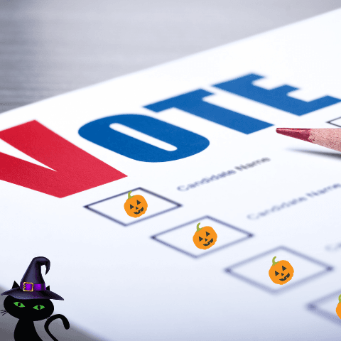 cat - voter ballot